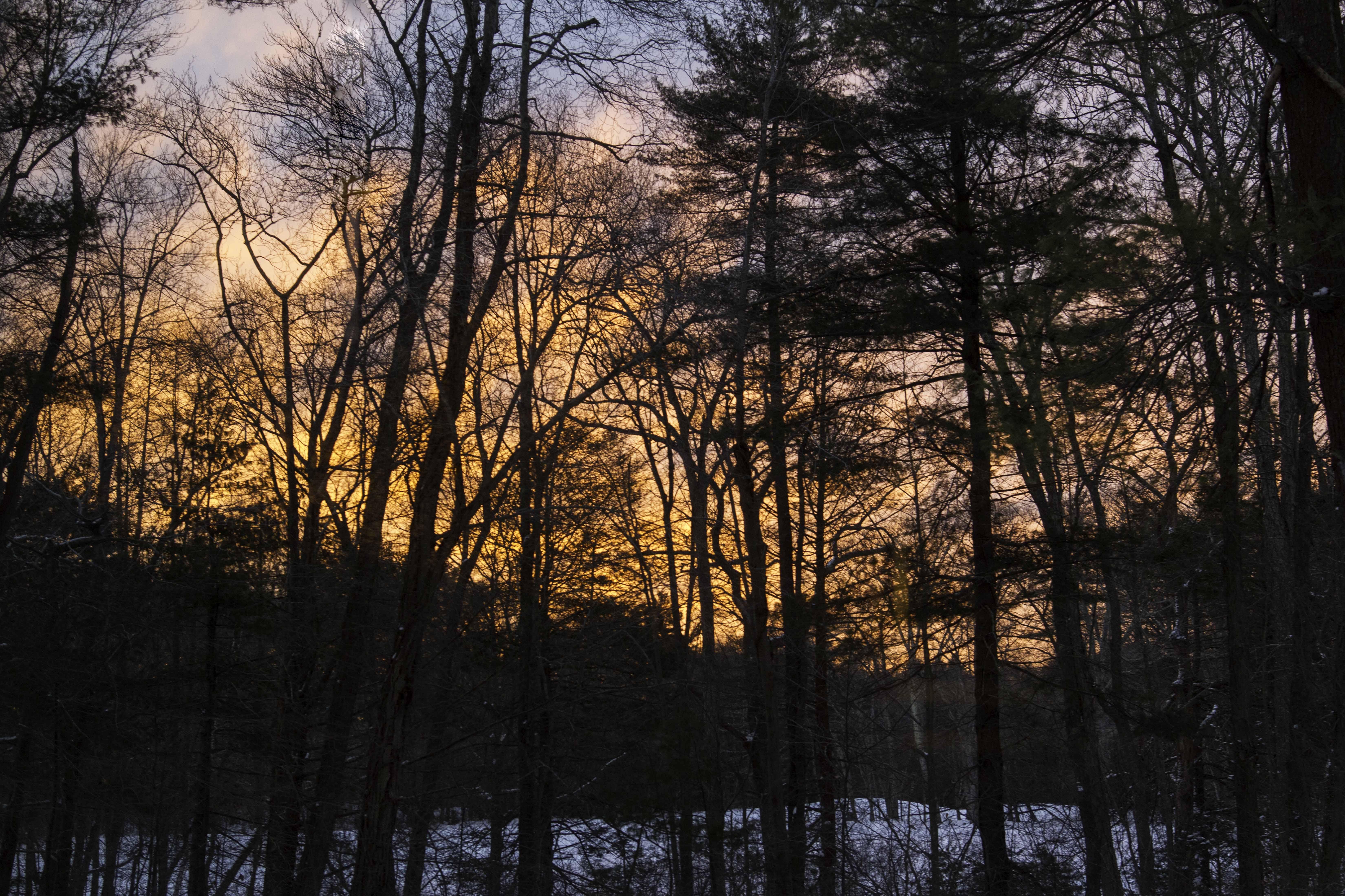 sunrise_img_7609